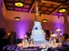 san-diego-cake-pinspot-lights-with-purple-uplights