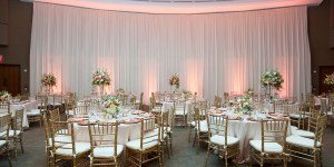 Scripps Seaside Forum Wedding|Backdrop with Uplights|Market Lights