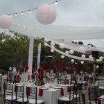 Market String Lights and beautiful chiffon draping at the Japanese Friendship Gardens.